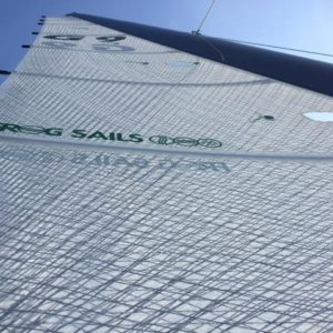 voile membrane frogsails